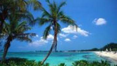 Bahama Abaco Plajı Canlı İzle